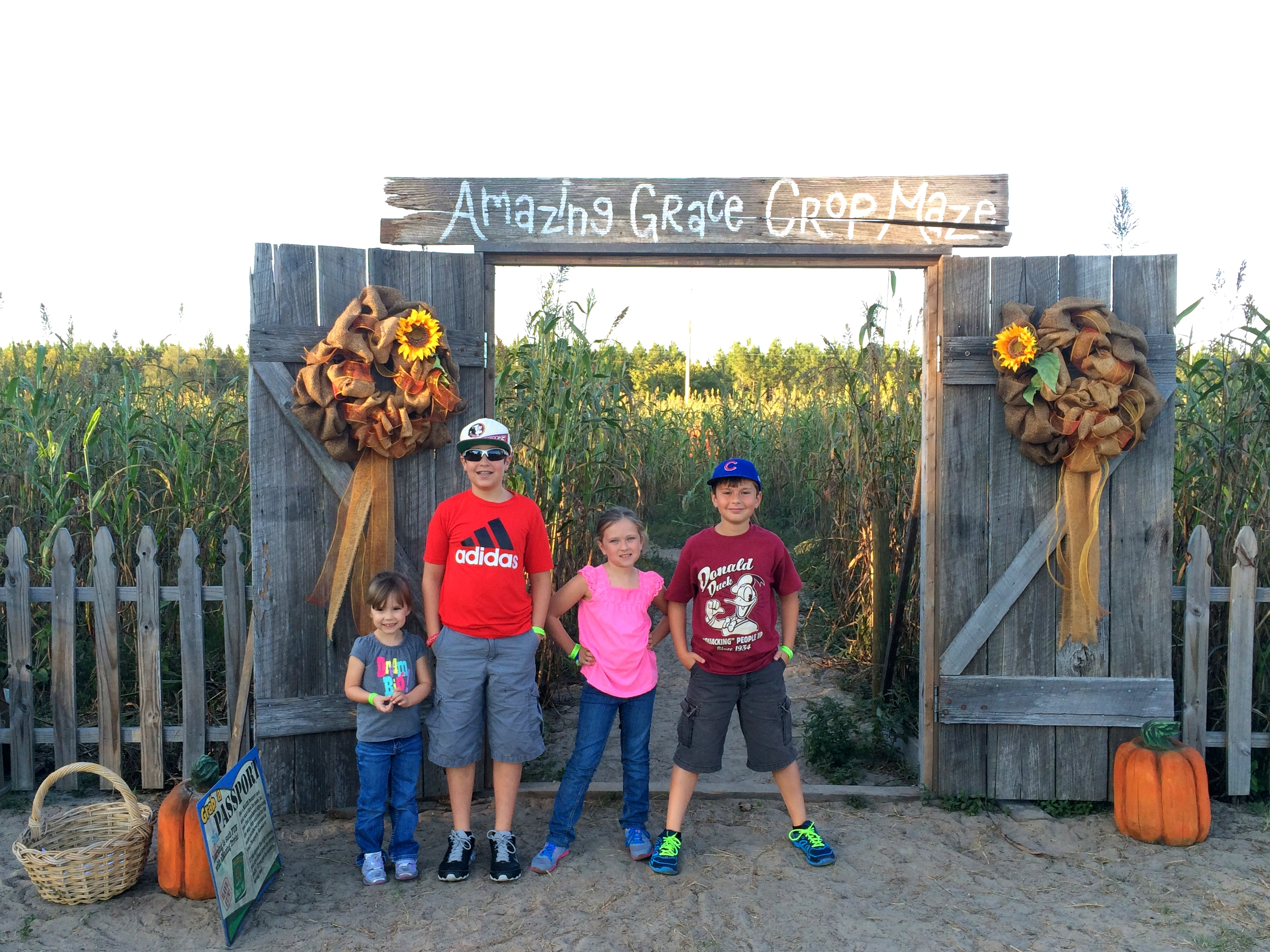 Parenting & the Pumpkin Patch